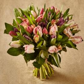 Букет из тюльпанов Пэррот