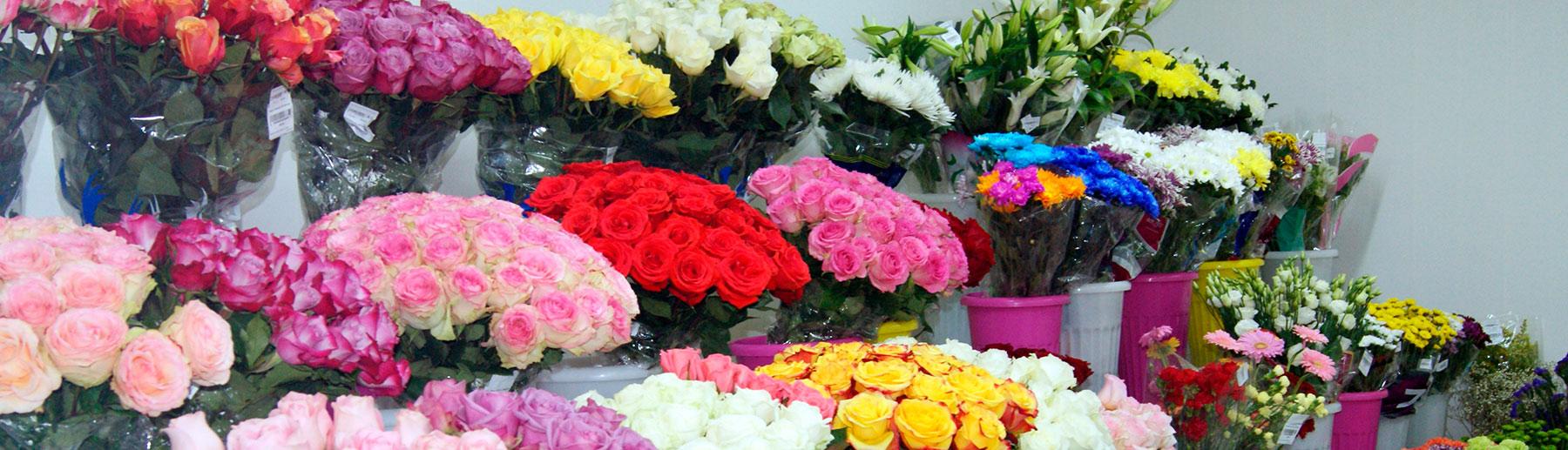 Цветы оптом раменский район деревня, оптом цветы